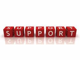 CS-Solution provides customers a professional support